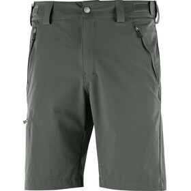 Salomon Wayfarer - Shorts Homme - regular vert